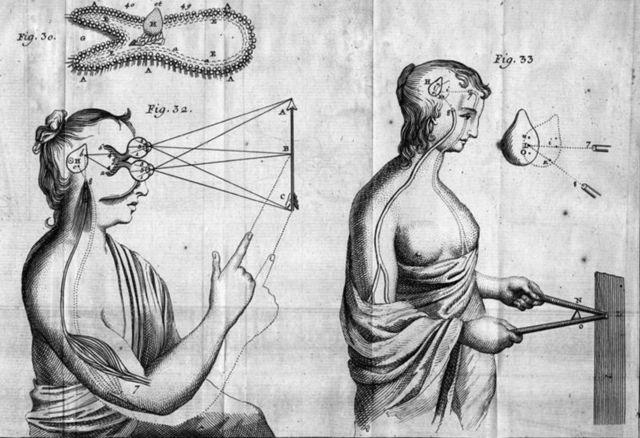 800px-Descartes_body_physics_1